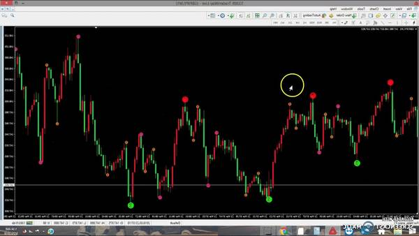 Notice Ea forex how much forex traders earn