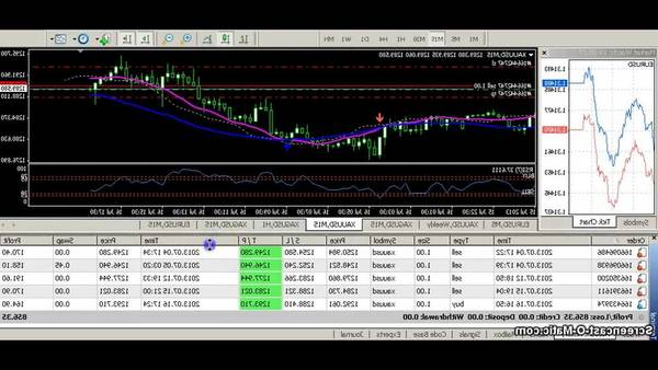 Review Forex technical analysis how much forex traders earn