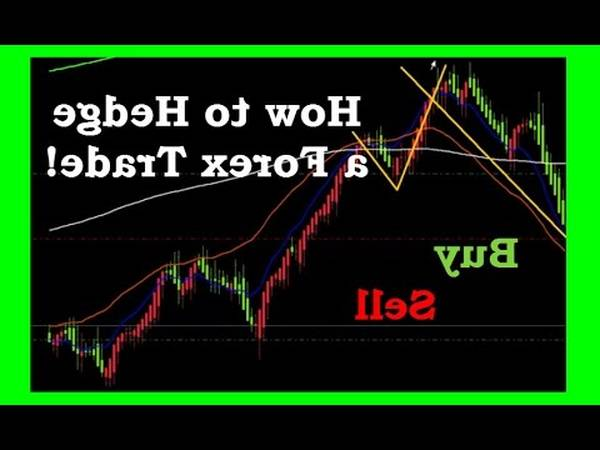 Review Best forex robot how forex leverage works