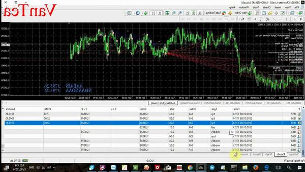 Review Forexlive which forex broker